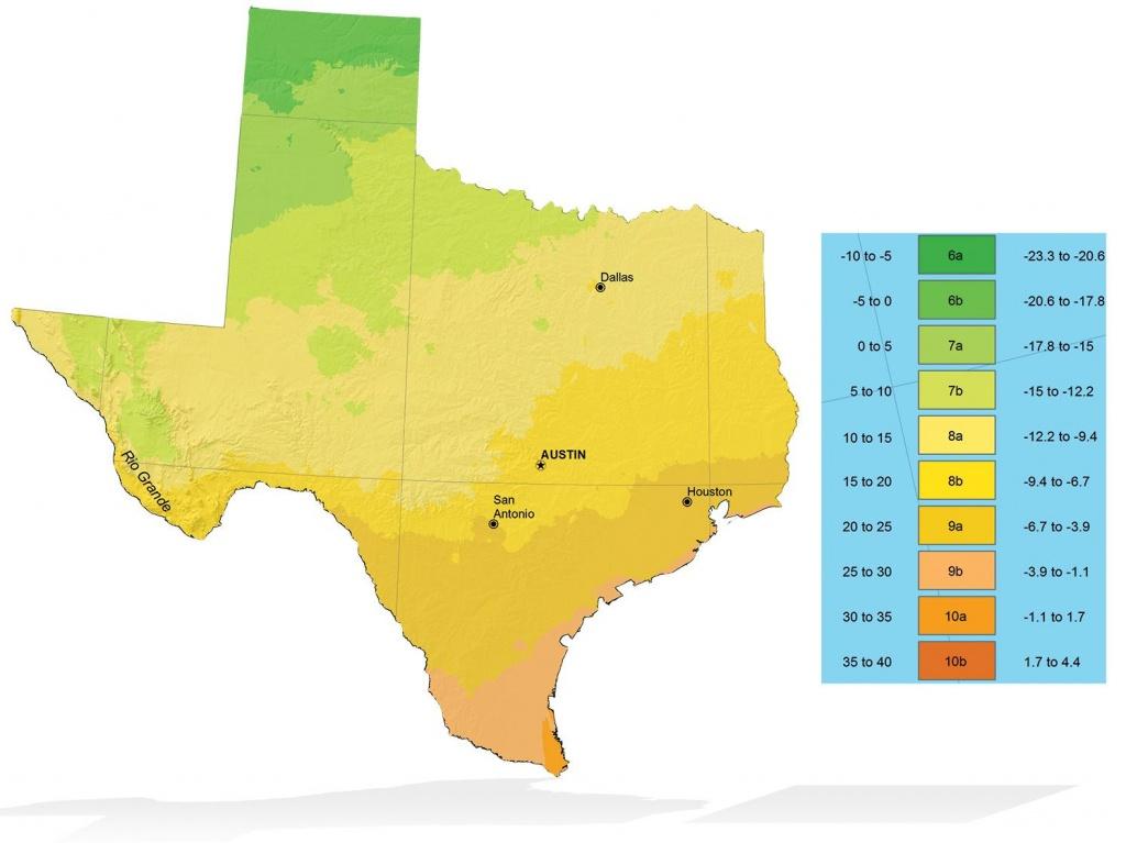Texas Zone Elevation Map   Info Graphics   Texas Plants, Plants - Texas Elevation Map