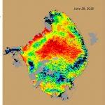 The Algae Bloom Is Back. But Why?   Florida Sea Grant   Toxic Algae In Florida Map