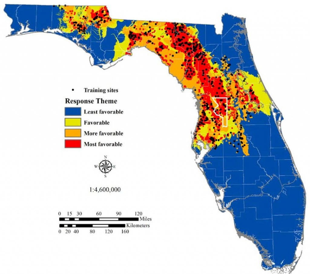 The Science Behind Florida's Sinkhole Epidemic | Science | Smithsonian - Topographic Map Of Florida Elevation