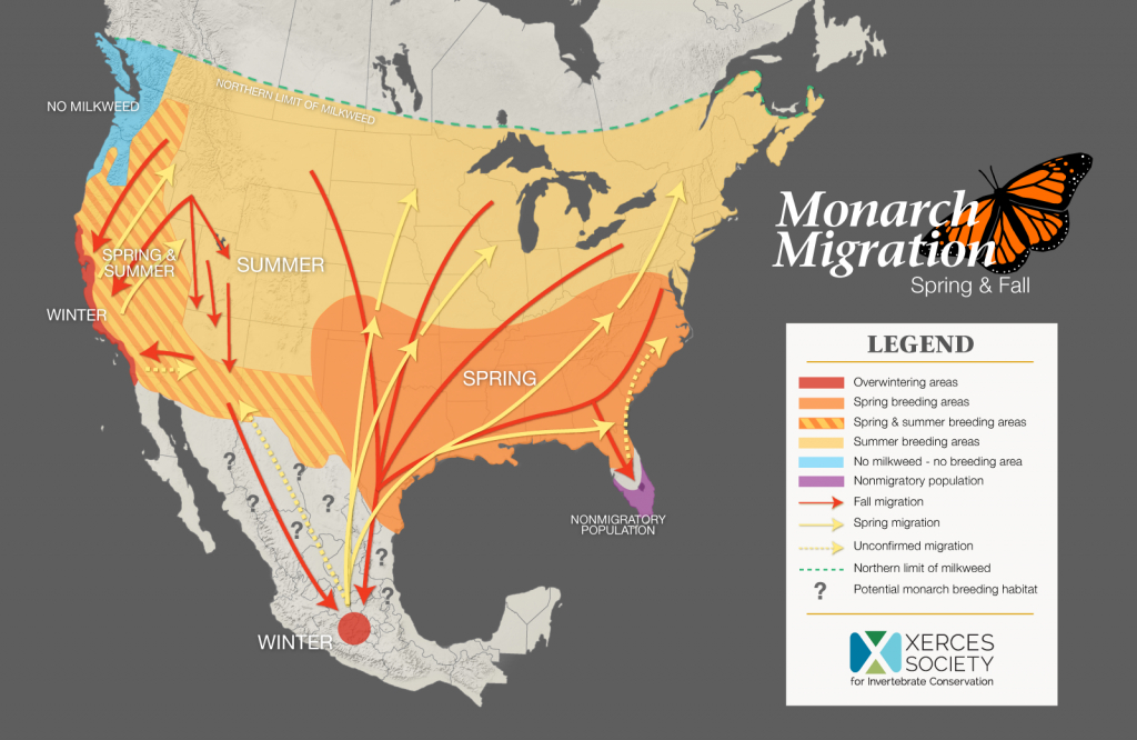 The Xerces Society Monarch Conservation - The Xerces Society - Monarch Butterfly Migration Map California