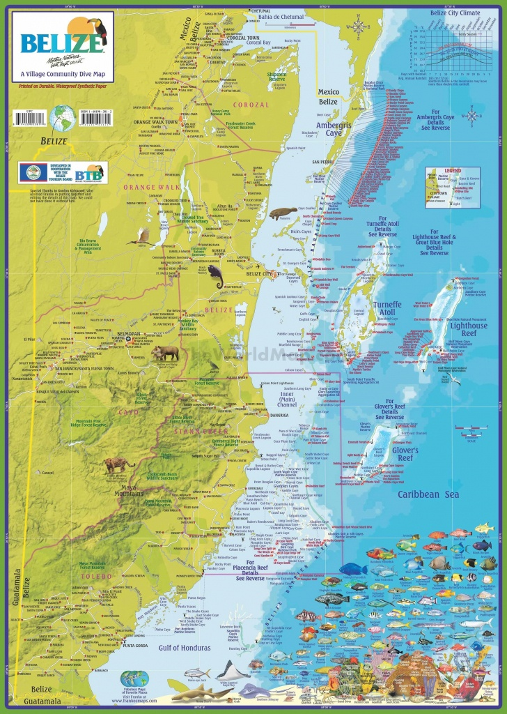 Travel Map Of Belize - Printable Map Of Belize