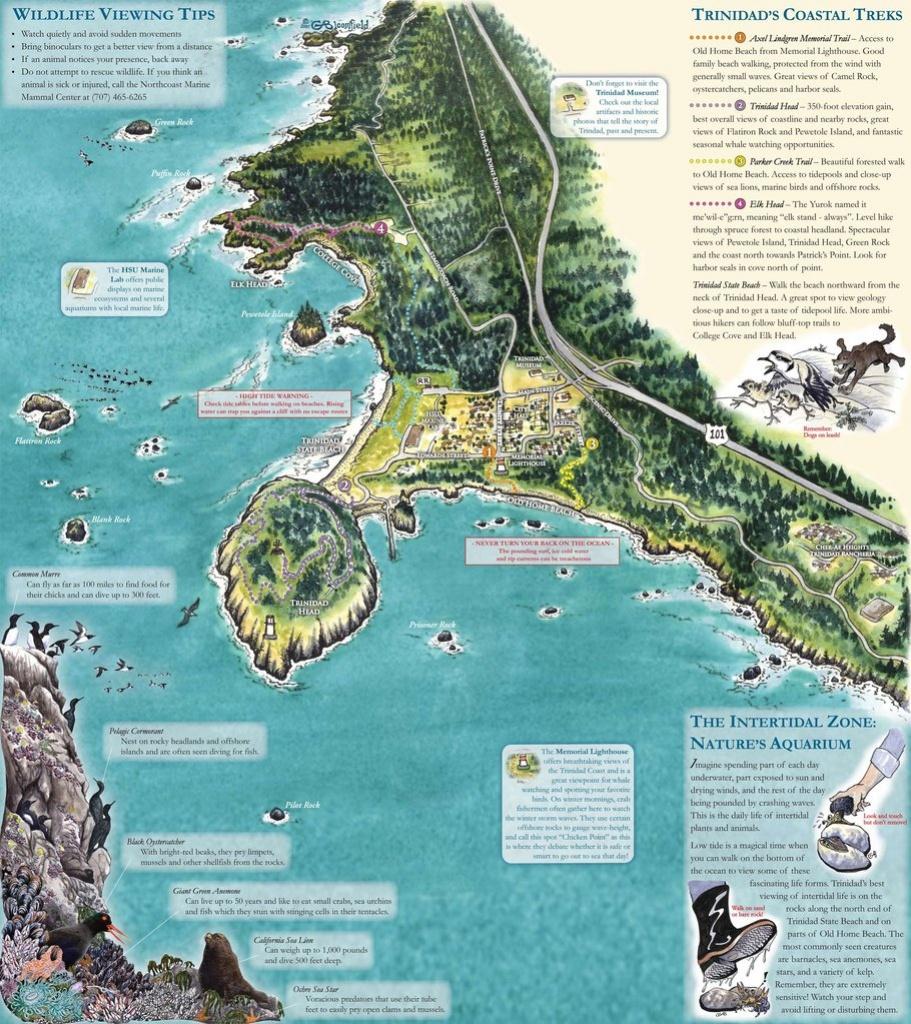 Trinidad Ca Trails Map - Maplets - Trinidad California Map