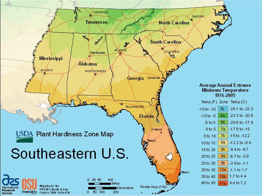 Usda Plant Hardiness Zone Mapsregion - Usda Zone Map Florida