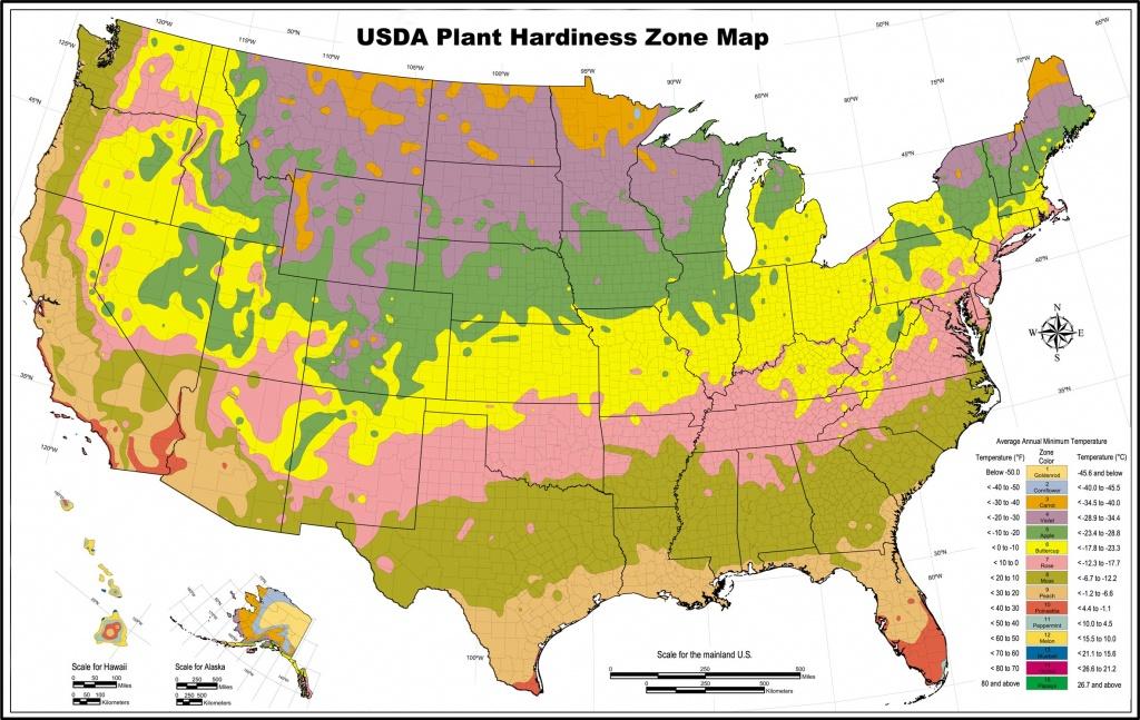Usda Zone Map For Los Angeles Gardeners - Lawnstarter - California Heat Zone Map