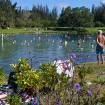 Warm Mineral Springs In North Port, An Adventure In History And   Warm Mineral Springs Florida Map