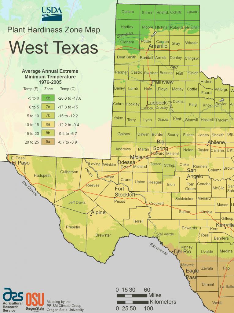 West Texas Plant Hardiness Zone Map • Mapsof - Texas Hardiness Zone Map