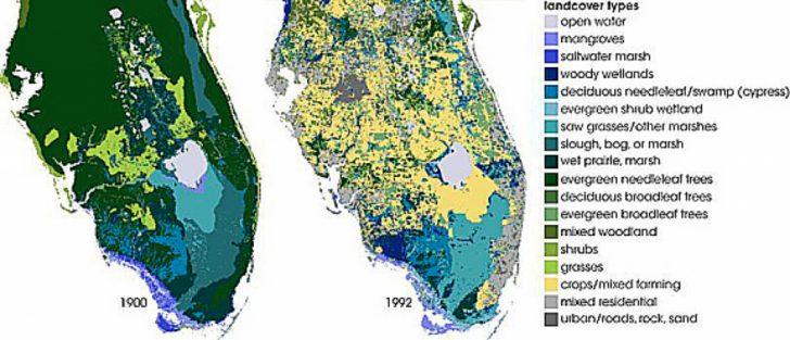 Florida Wetlands Map