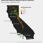 Why California's Wildfires Are So Destructive, In 5 Charts   California Forests Map